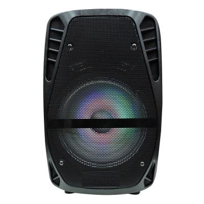 "PARLANTE KARAOKE Bluetooth 8"" 700W (PMPO)"